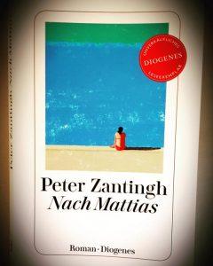Nach Mattias Roman Cover