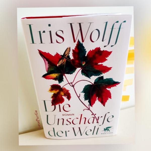 Die Unschärfe der Welt ist ein Roman über eine rumänische Familie, die wir Leser in kleinen Ausschnitten über Generationen begleiten.