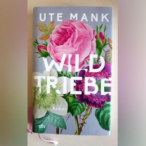 Wildtriebe ist ein Generationenroman, ein Roman über drei Frauen, die ihren Platz im Leben suchen.